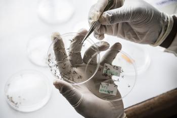 Malaria Lab Research
